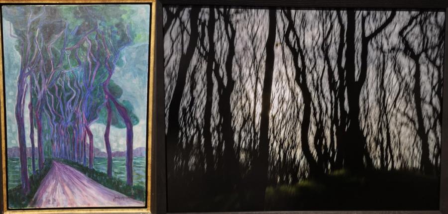 Bomen volgens Van Heemskerck en Vanfleteren