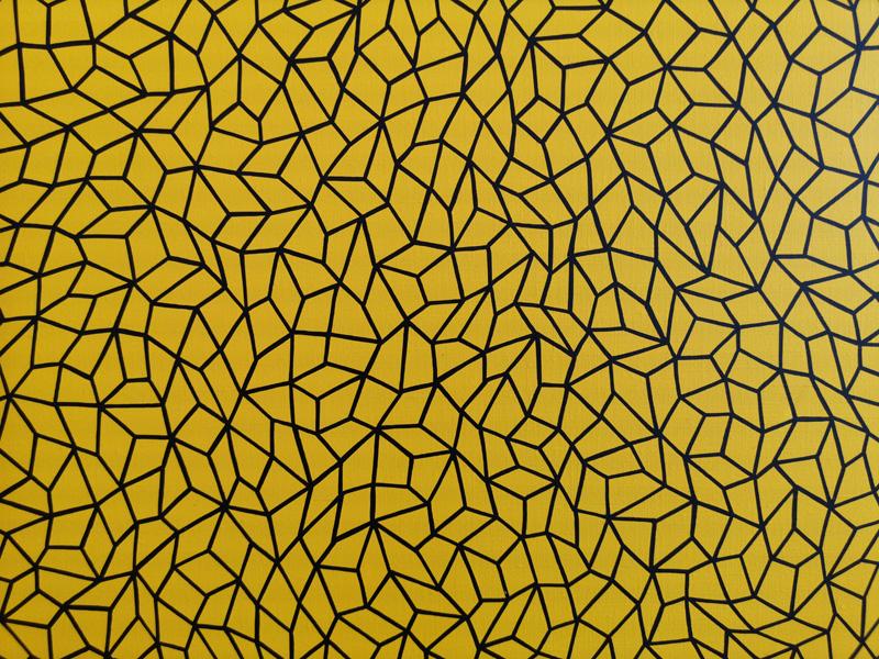 Infinity Nets (Eksyo), 2010, detail