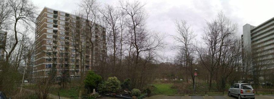 De twee flats in omgeving