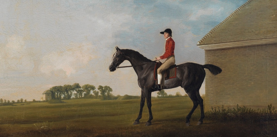 George Stubbs, Gimcrack, with John Pratt up, on Newmarket Heath, uitsnede